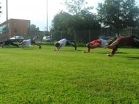 db_Trainingslager58_2012