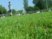 db_Trainingslager78_2012